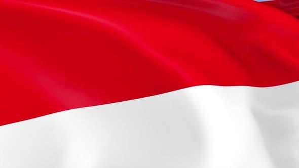 Thumbnail for Monaco Flag