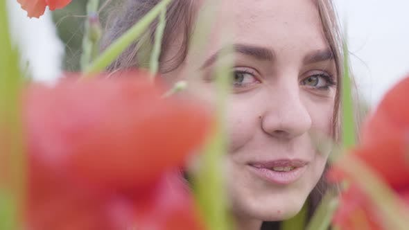 Cover Image for Close-up Portrait Cute Girl Looking at Camera Sitting in Poppy Field. Cute Happy Smiling Girl