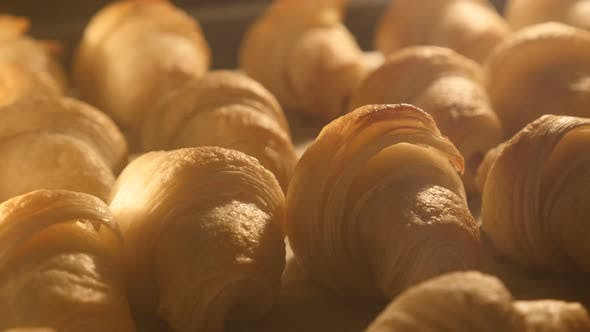 Thumbnail for Crescent Rollen Backen im Ofen langsam neigen 4K 2160p UltraHD Filmmaterial - Langsame Neigung auf Croissants mit
