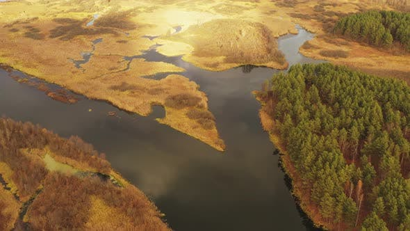 Aerial View Of River And Wetland In Autumn Day. Top View Of River Coast From High Attitude