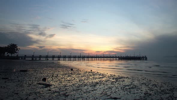 Jerejak Jetty with sea creatures move at the beach.