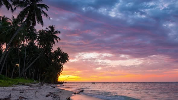 Time lapse: sunset over tropical beach and sea colorful dramatic sky moving clouds palm trees