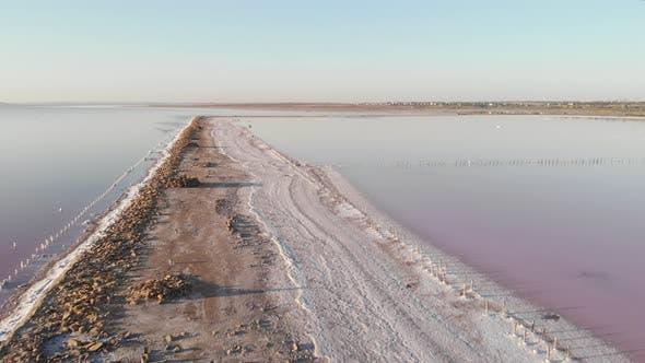 Thumbnail for Salt lake with dried shore and pink water colored with alga Dunaliella salina at summer