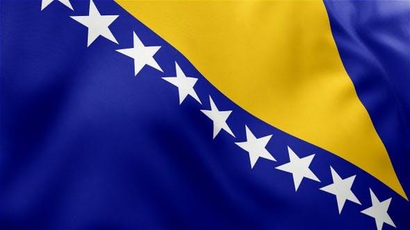 Thumbnail for Bosnia and Herzegovina Flag