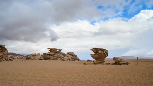 Thumbnail for Famous Bolivian Stone Tree