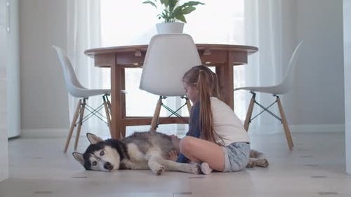 Girl Stroking Her Purebred Dog While Lying on the Floor in a Modern Apartment