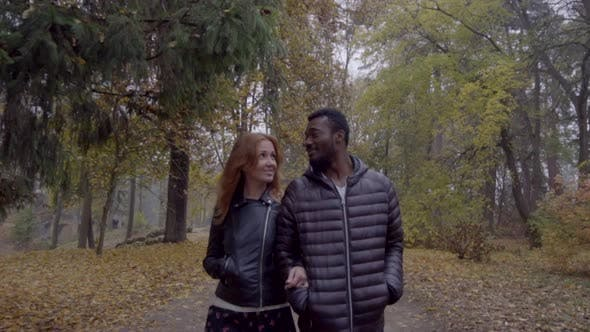Thumbnail for Interracial Love Concept. Beautiful Young Interracial Couple Walking on Road in the Foggy Autumn