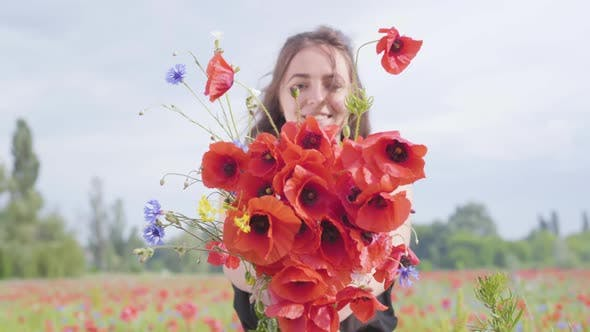 Thumbnail for Pretty Young Girl in a Poppy Field Holding Bouquet of Flowers in Hands Looking in the Camera