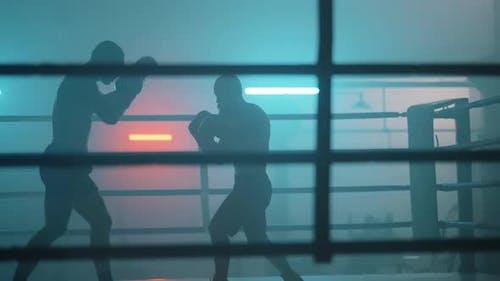 Fight Silhouette