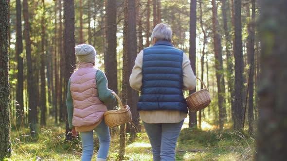 Thumbnail for Grandmother and Granddaughter Picking Mushrooms
