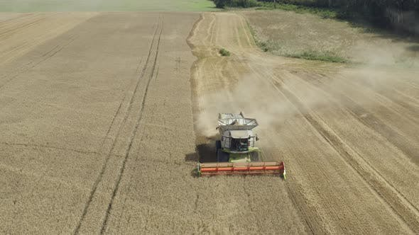 Cover Image for Combine Harvesting Field