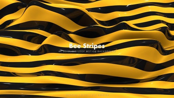 Thumbnail for Bee Stripes 12