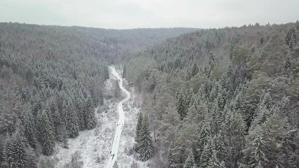 Thumbnail for Beatiful Drone Show From Sky Above Snowy Pine Trees in Europe