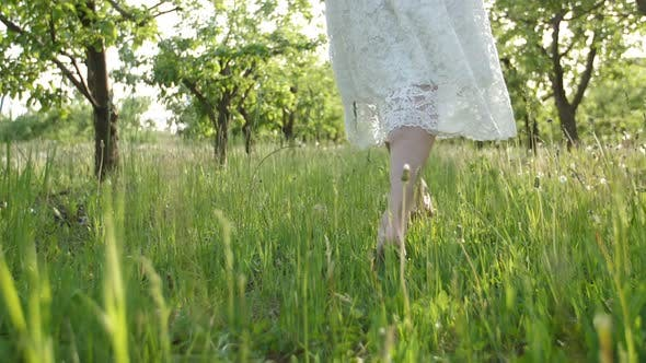 Thumbnail for Barefoot Woman's Legs Walking on Green Grass