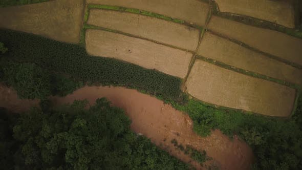 Thumbnail for Aerial View of Lush Green Rain Forest Mountain 04