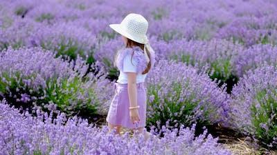 a Girl Walking in a Lavender Field
