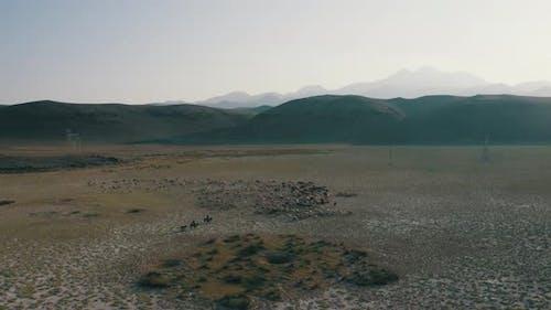 Desert Lake and Animals 2