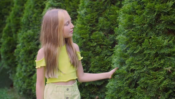 Thumbnail for Teenager Girl Touching Hand Fluffy Green Cypress on Garden Walk. Happy Girl Walking in Summer Garden