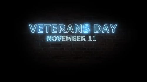 Veterans day. Text neon light on brick wall background.