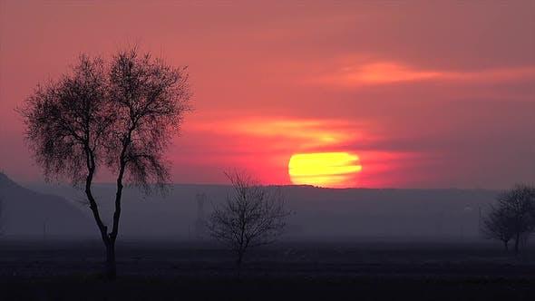 8K Mystic Sunset