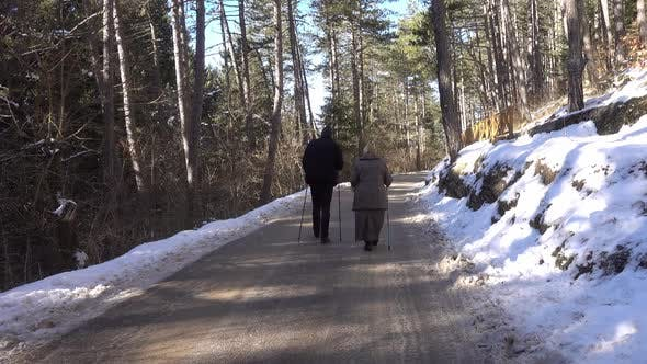 Thumbnail for Senior Couple On Walk In Forest