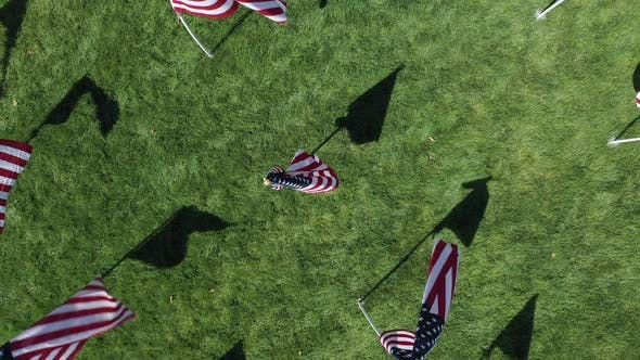 Rising aerial view of American Flags in field