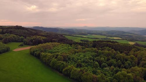 Drone Flying Above Wood Cloudy Sky