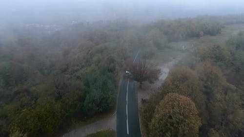 Silver Car Driving Trough Misty Spooky Forest, Aerial Drone View