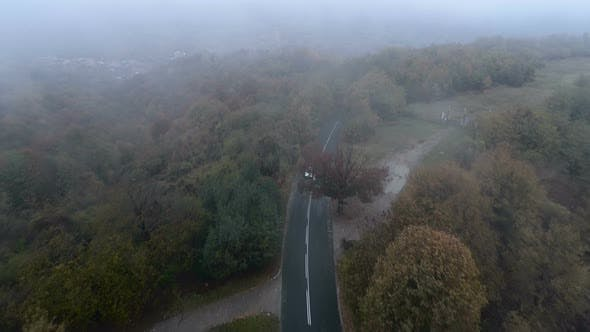 Thumbnail for Silver Car Driving Trough Misty Spooky Forest, Aerial Drone View