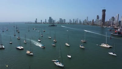 The Beautiful Yachts Drifting in the Bay