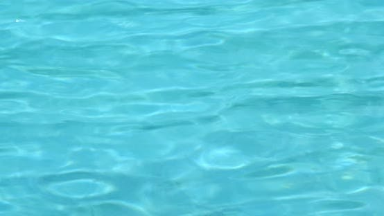 Thumbnail for Swimming pool water wave in blue