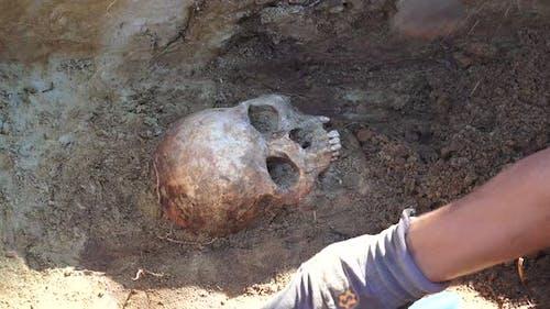 Massengrab oder archäologische Ausgrabungen 5
