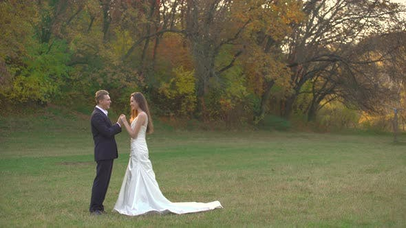 Thumbnail for Happy Newlyweds Enjoy Each Other on Sunny Day in Autumn Park. Man Kisses the Hands of His Beloved