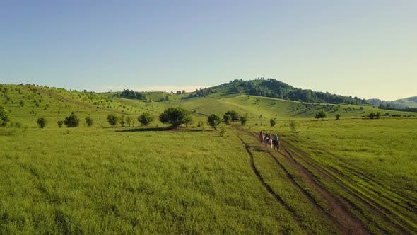 Thumbnail for Aerial: Tourist Group of People on Horseback Moves Along Fields and Mountains