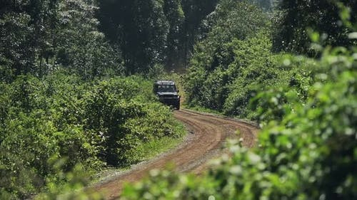 A Safari Truck Swiftly Driving In The Dirt Road Located In The Midst Of The Forest In Aberdares. -wi
