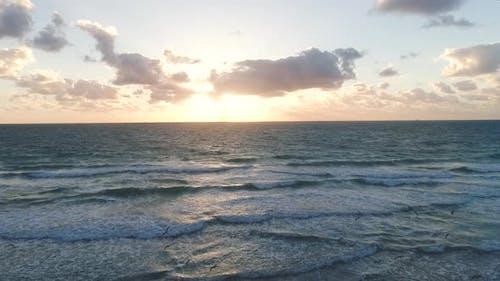 Flock Of Möwen Morgen Strand Leben Schönheit In der Natur
