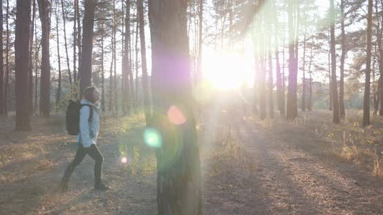 Thumbnail for Woman with tourist backpack walking in fall forest at sunset with sunlight shining through trees