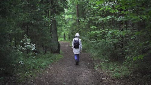 Unknown Person Walking On Forest Path