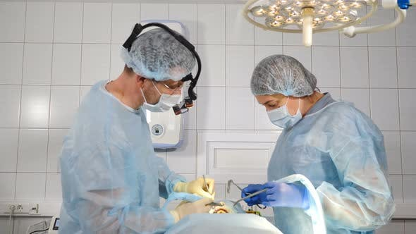 Thumbnail for Dental Treatment in Dentistry Clinic During Surgery Operation. Dentist Doctors Working with Female