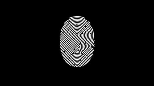 Animation Of Fingerprint With Alpha Channel Touch Id Futuristic Digital Processing