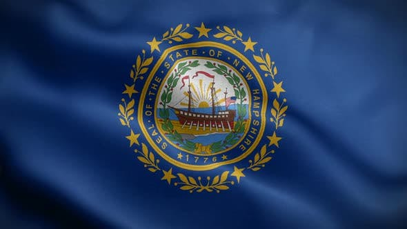 New Hampshire State Flag Blowing In Wind