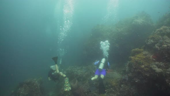 Thumbnail for Scuba Divers Underwater. Philippines, Mindoro