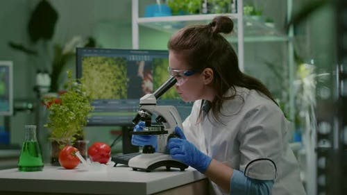 Portrait of Biologist Scientist in White Coat Working in Expertise Laboratory
