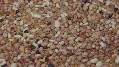 Dry Mixed Legumes