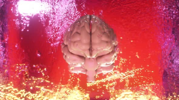 A Frozen Human Brain Inside a Spinning Ice Cube