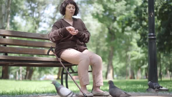 Portrait of Old Lonely Caucasian Woman Sitting on Bench and Feeding Pigeons. Senior Brunette Female
