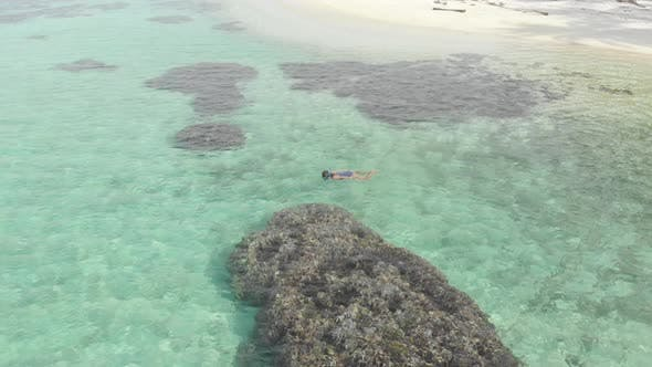 Thumbnail for Aerial: woman snorkeling on coral reef tropical caribbean sea, turquoise blue water