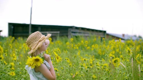 Portrait Rural Girl in Straw Hat with Sunflowers on Flowering Field in Countryside. Young Woman