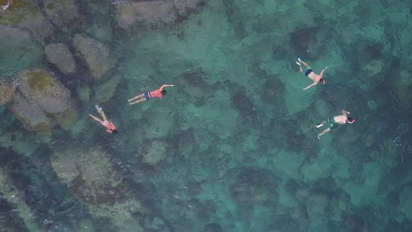 Thumbnail for Snorkeling in Coral Lagoon