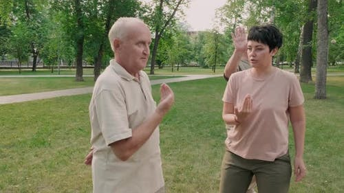 Tai Chi Chuan Trainer Training Aged People Outdoors